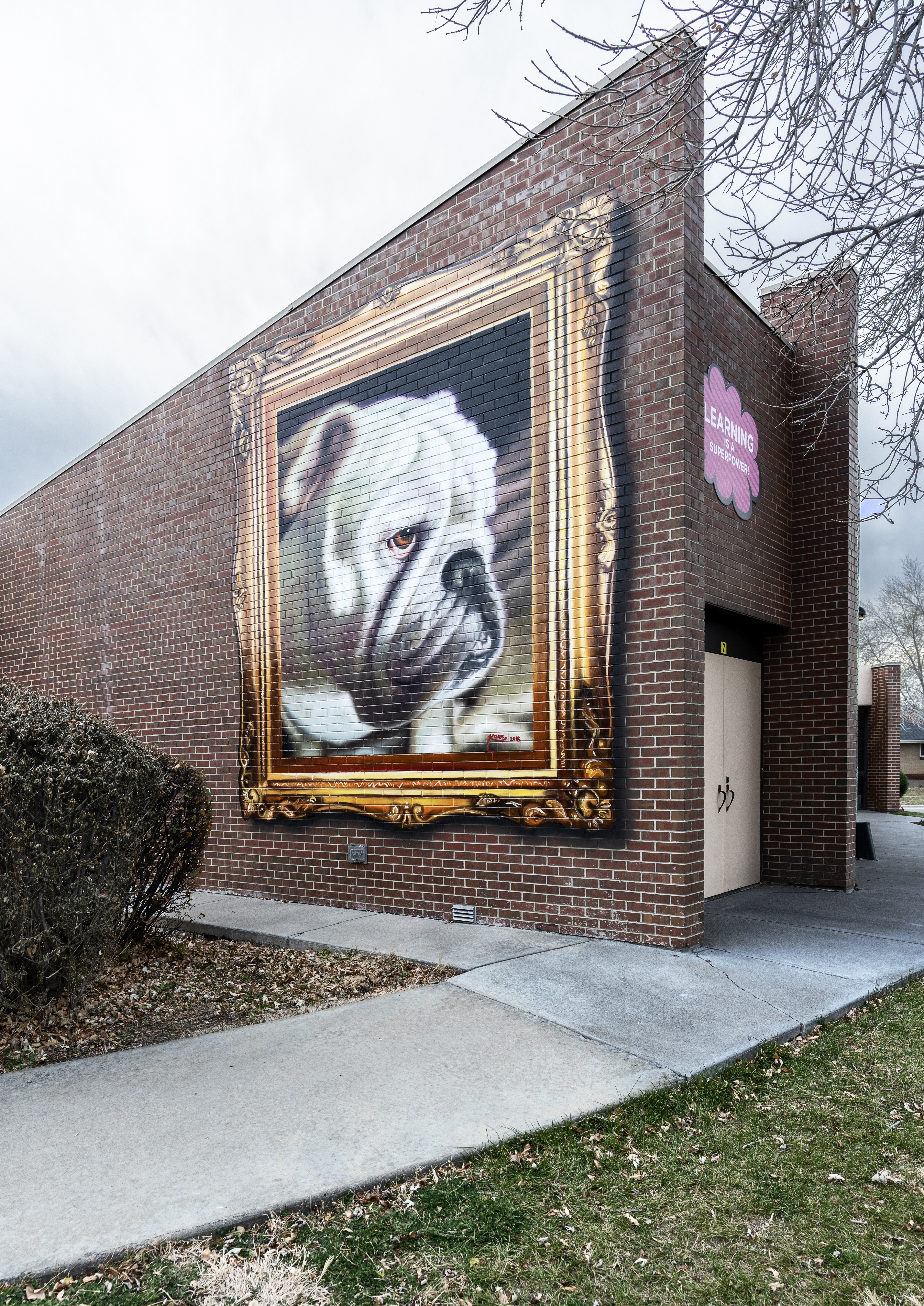 Untitled (portrait of bulldog with gold frame)